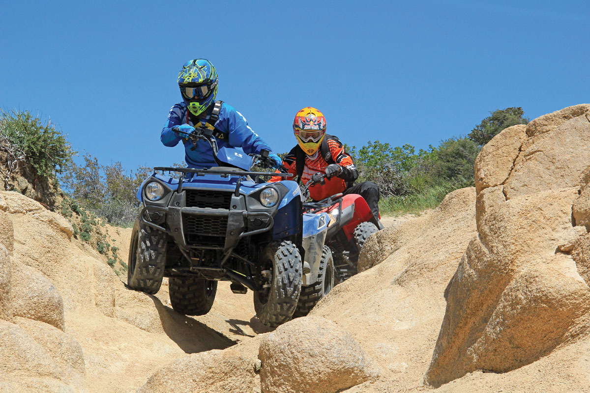 Kawasaki Brute Force Vs Arctic Cat