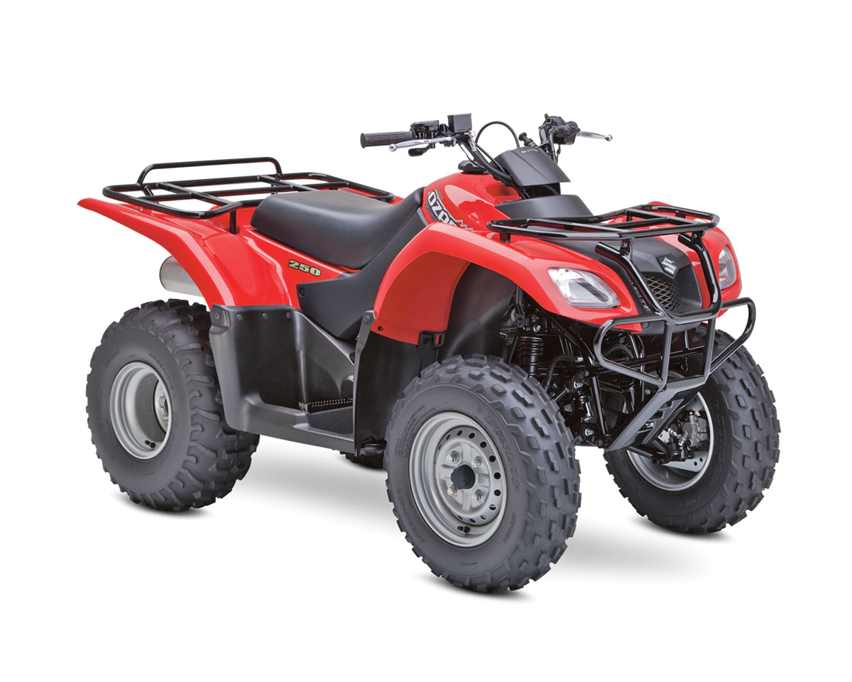 06 Suzuki Ozark 250 dirt wheels magazine 2014 4�2 atv buyer's guide suzuki ozark 250 wiring diagram at bayanpartner.co