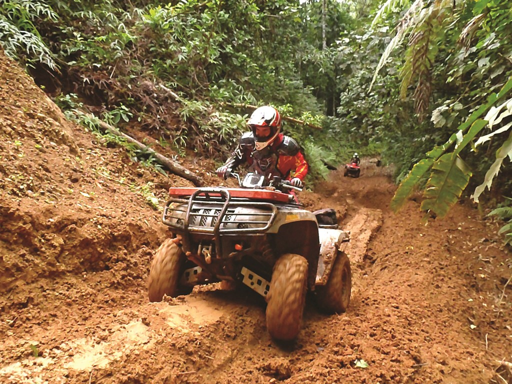 Navigating the thick jungle is easier when there's a rider ahead to follow.