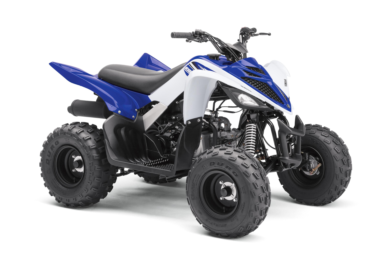 Квадроциклы Стелс Motor4ik.ru, купить квадроцикл Stels в ...