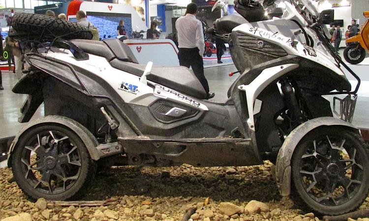 quad scooter